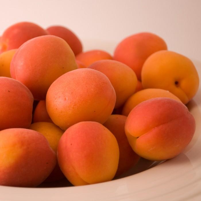 Fresh Apricot Ginger Peasant Cake