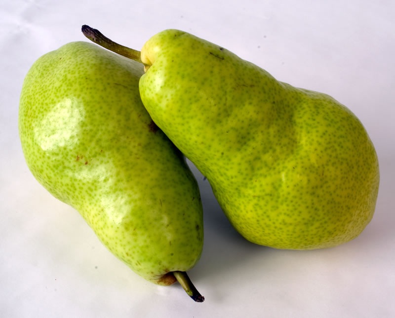 New Crop Northwest Bartlet Pears