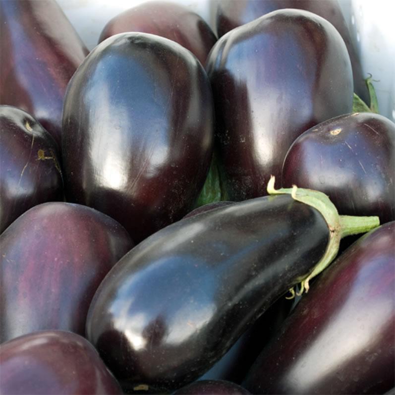 University Farmer's Market Eggplant 2
