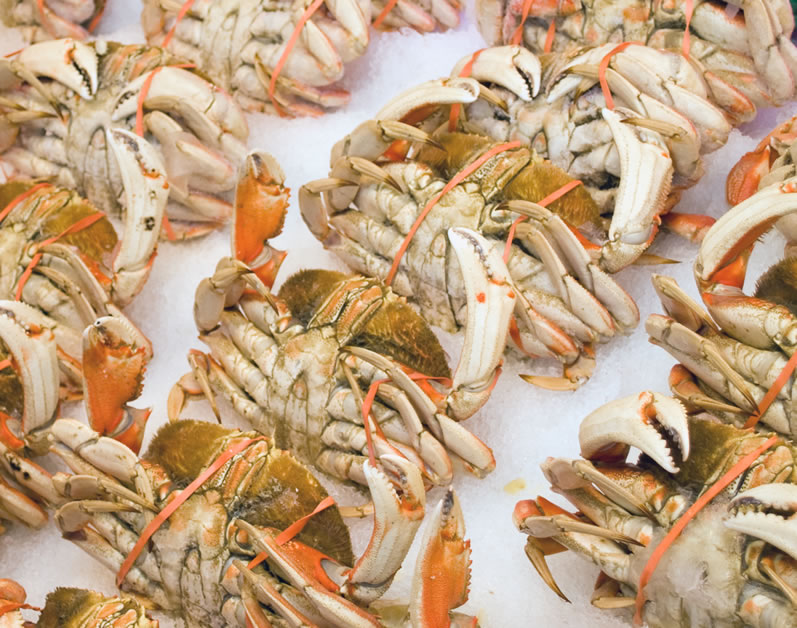 Dungeness Crab at Pike Place Market in April