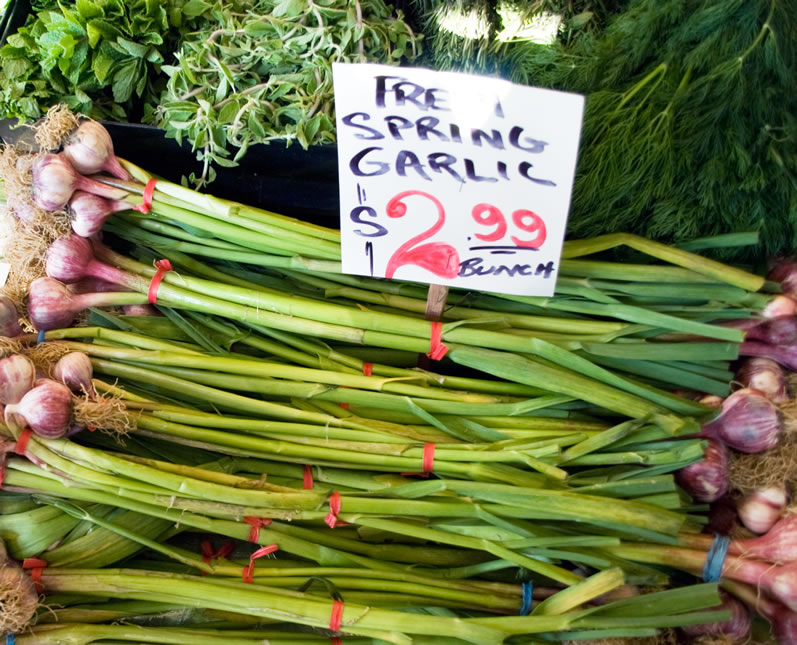 Fresh Spring Garlic at University District Farmers Market in April
