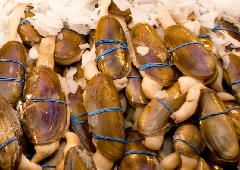 Razor Clams at Pike Place Market in April