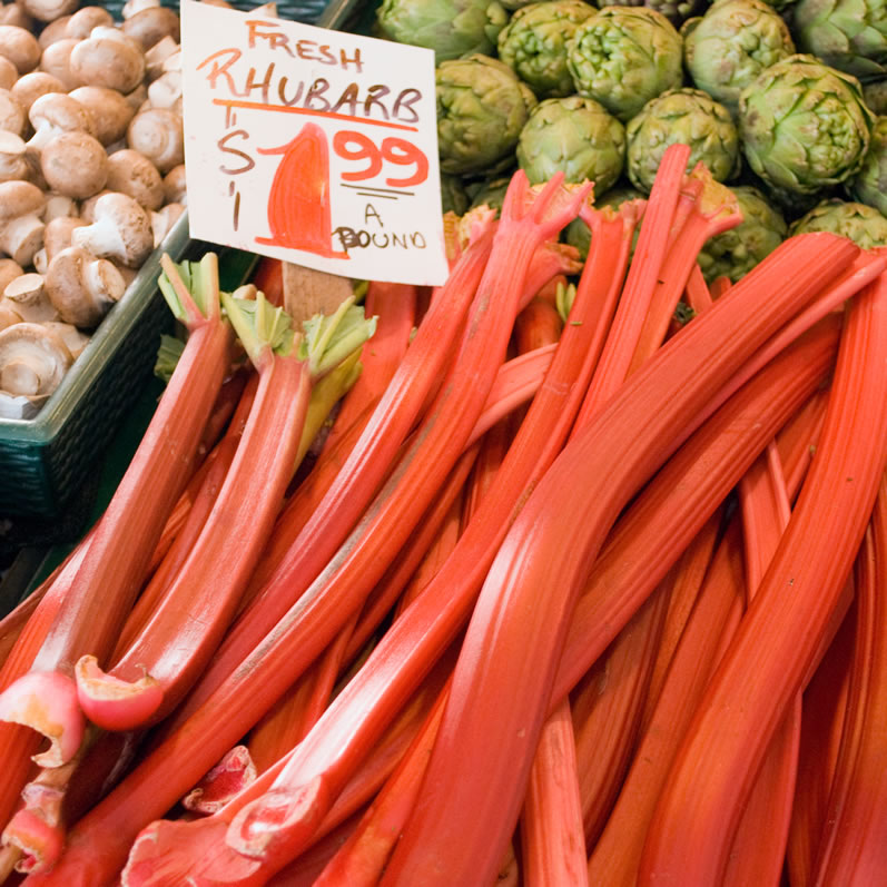 Northwest Hothouse Rhubarb in April