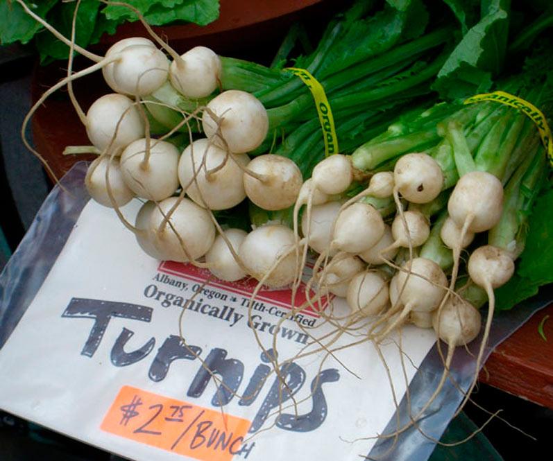 Baby Turnips