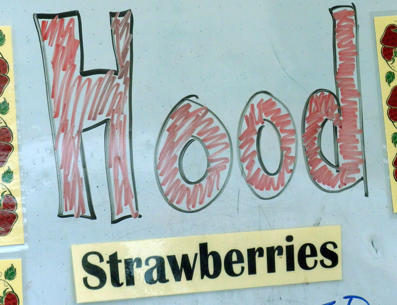Sign for Hood Early Season Oregon Strawberries