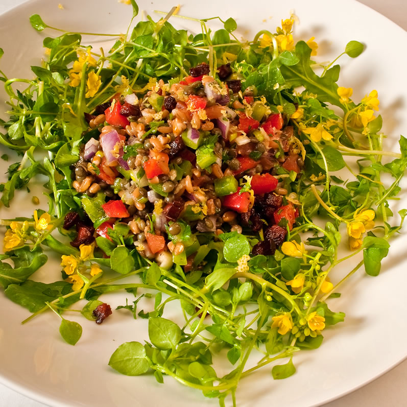Northwest Early Spring Farro & Lentil Salad | LunaCafe