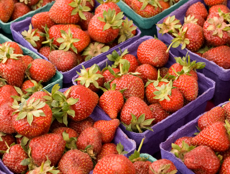 Seascape Early Season Oregon Strawberries