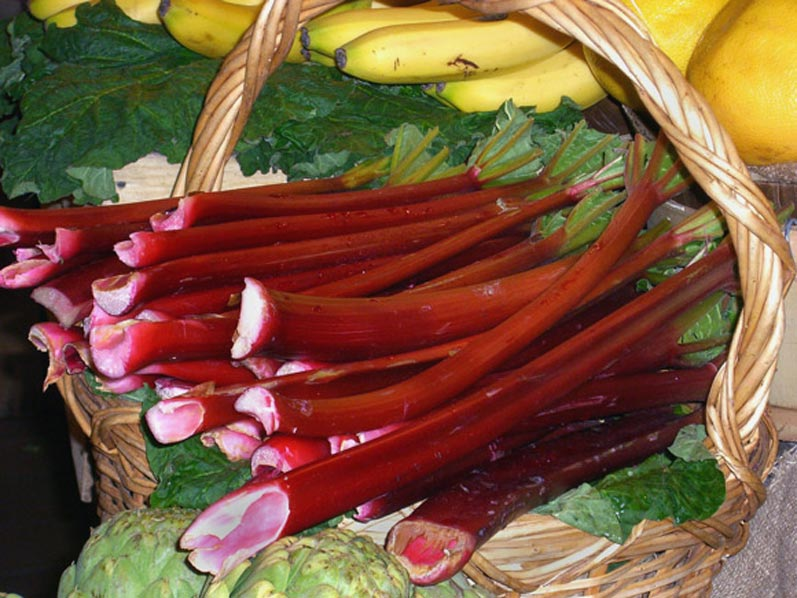 Rhubarb at a Northwest Farmers Market