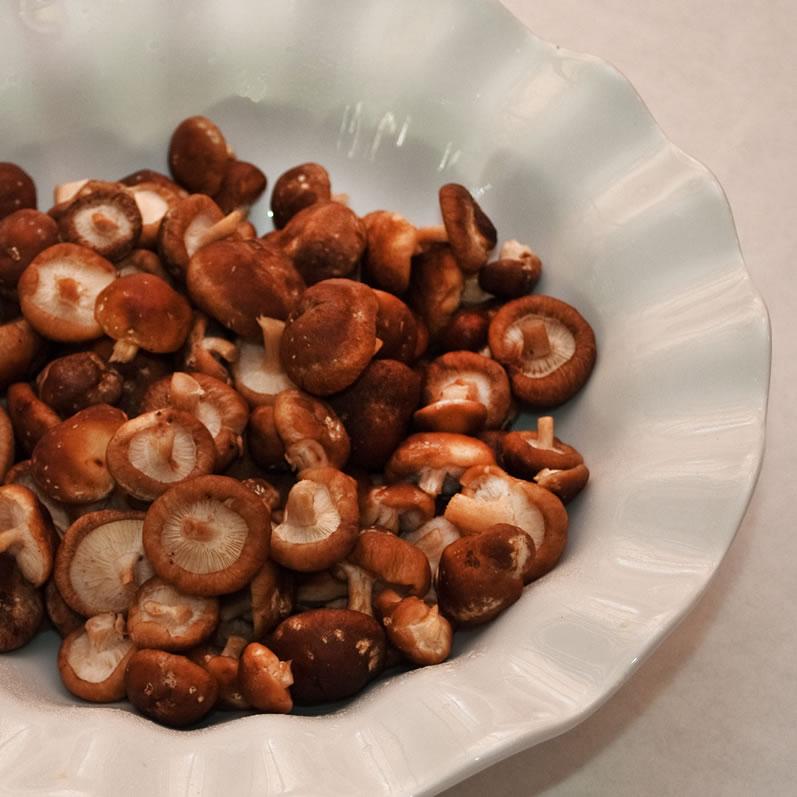 Baby Shiitake Mushrooms