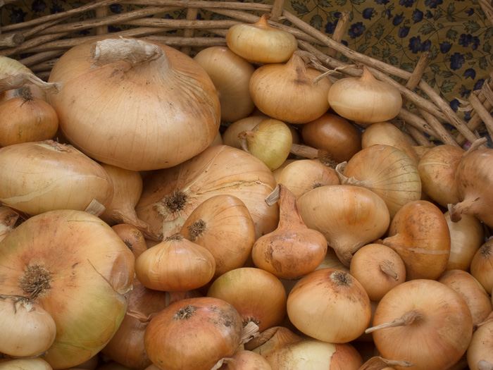 Portland Farmers Market Opening Day 2014: Cippolini Onions