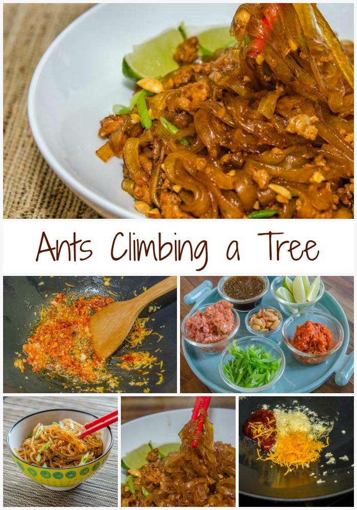 Ants Climbing a Tree | LunaCafe