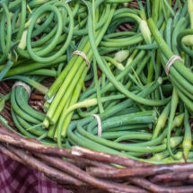 Fresh Primer: Green Garlic & Garlic Scapes