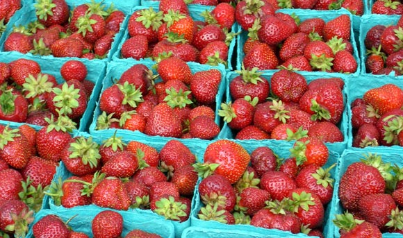 Local Strawberries at University District Farmers Market